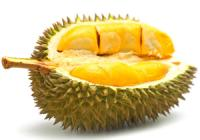 Durian a tigrisek kedvenc gyümölcse