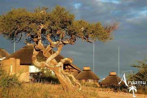 GocheGanas Nature Reserve and Wellness Village
