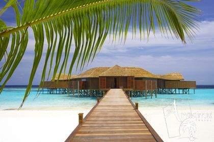 Lily Beach Resort & Spa - Maldív-szigetek utazás, nászút és esküvő
