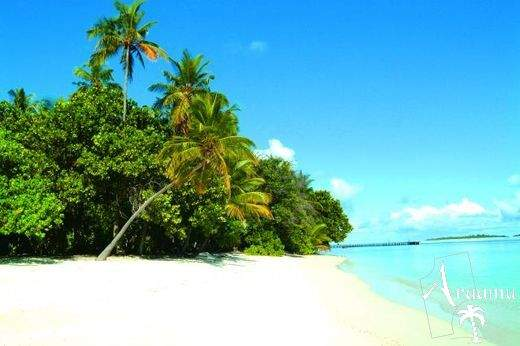 Biyadhoo Island Resort***